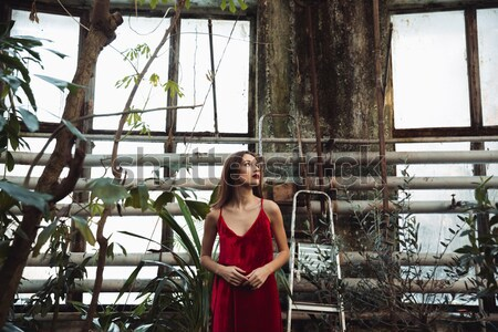 Side view of Young brunette woman in greenhouse Stock photo © deandrobot