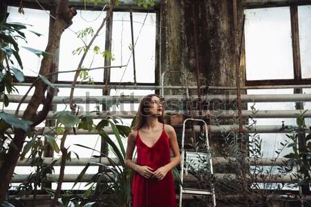 Widok z boku młodych brunetka kobieta szklarnia czerwona sukienka Zdjęcia stock © deandrobot