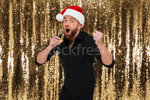Portrait of a cheerful bearded man in christmas hat Stock photo © deandrobot