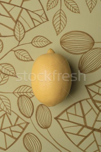 Lemon over outline floral background Stock photo © deandrobot