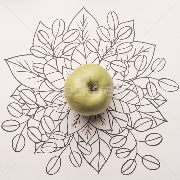 Green apple over outline floral background Stock photo © deandrobot