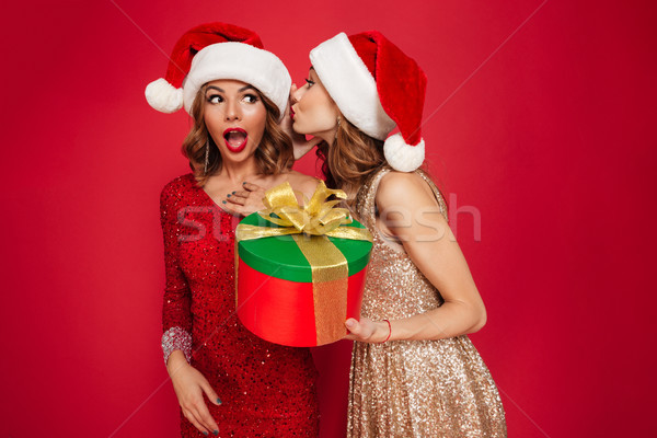 Stock photo: Portrait of two lovely cute women in christmas hats