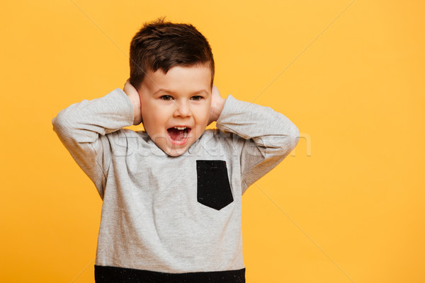 Screaming little boy child covering ears with hands. Stock photo © deandrobot