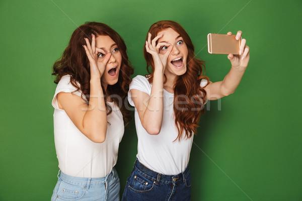 Obraz dwa zabawny teen dziewcząt imbir Zdjęcia stock © deandrobot