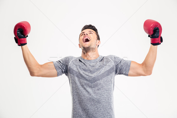 Man in boxing gloves celebrating his victory Stock photo © deandrobot
