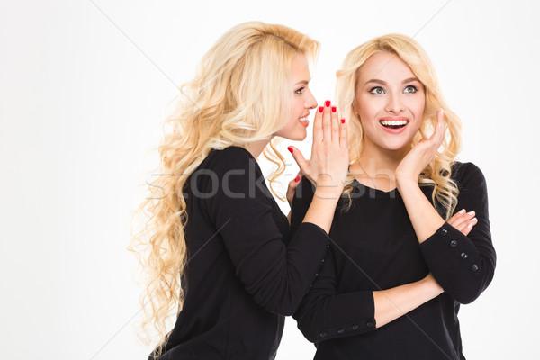 Portré boldog nővérek ikrek pletykál izolált Stock fotó © deandrobot