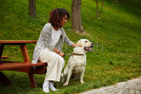 Young african lady sitting on bench in park and holding dog Stock photo © deandrobot