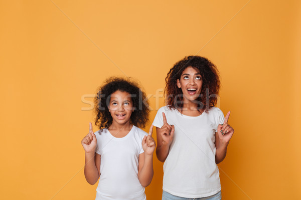 Portrait of a two joyful afro american sisters pointing fingers Stock photo © deandrobot