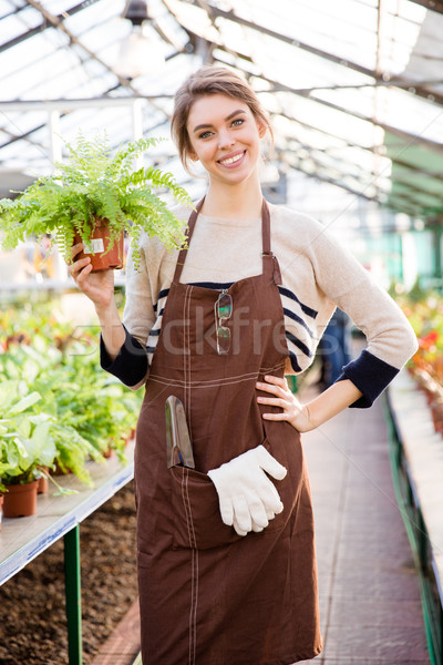 Cheerful  woman gardener standing in orangery and holding fern  Stock photo © deandrobot