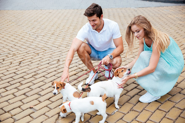 Beautiful smiling couple petting their dogs on a sidewalk Stock photo © deandrobot