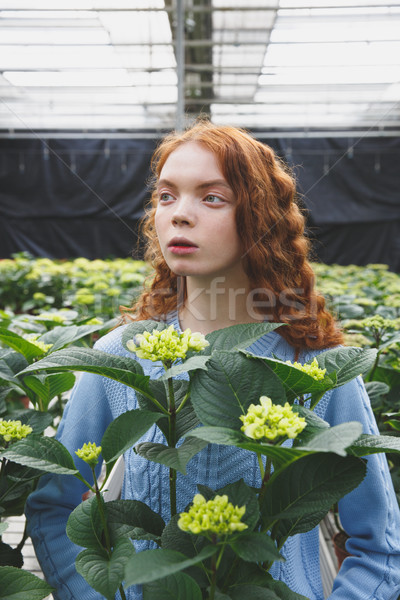 Girl with green plant Stock photo © deandrobot