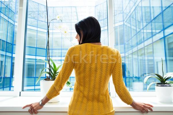 Back view portrait of a businesswoman  Stock photo © deandrobot