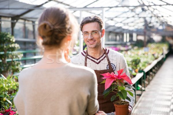 Gardener holding plant in pot and talking to young woman  Stock photo © deandrobot