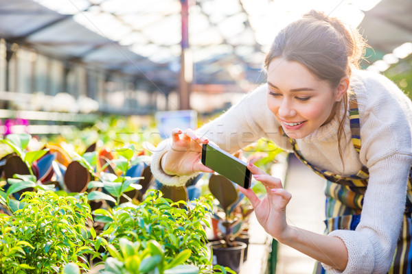 Boldog nő kertész elvesz kép növények Stock fotó © deandrobot