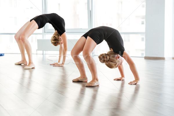 Gracieux peu ballerine enseignants ballet Photo stock © deandrobot