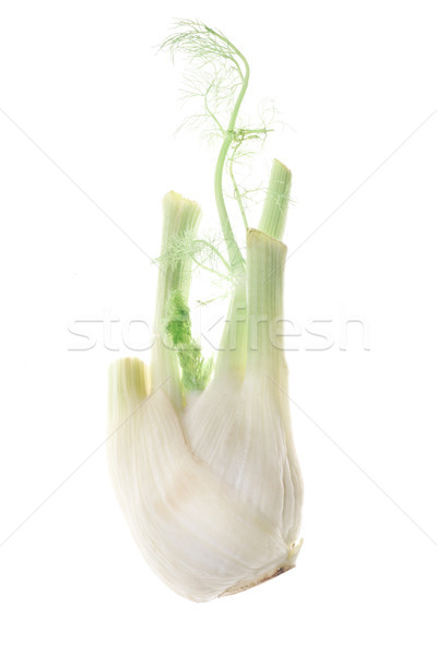 Fresh garlic isolated over white Stock photo © deandrobot