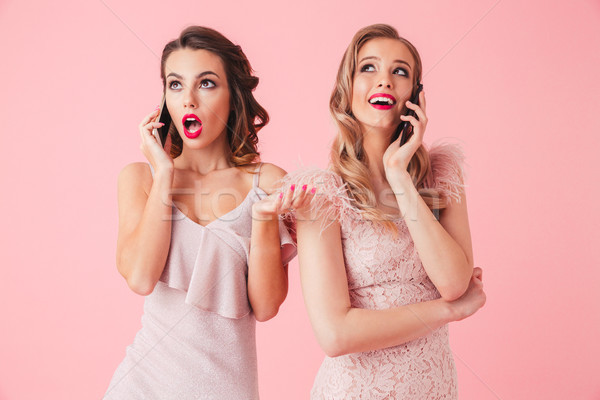 Two young elegant women in dresses posing together Stock photo © deandrobot