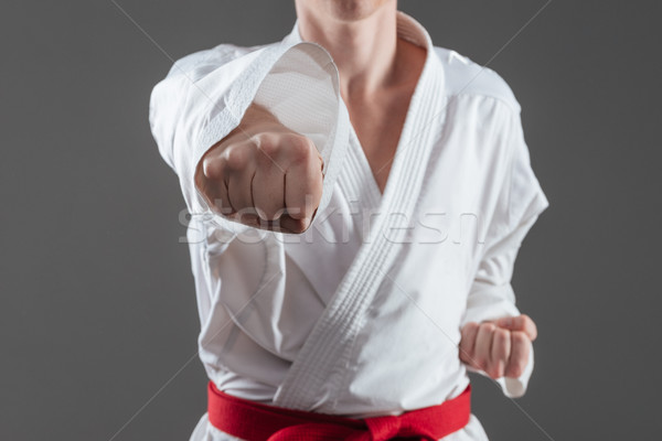 Cropped photo of handsome sportsman practice in karate Stock photo © deandrobot