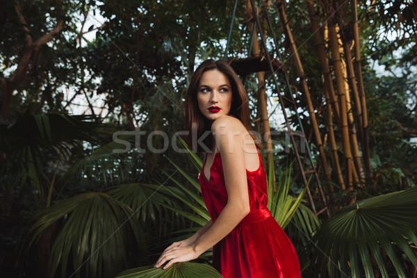 Widok z boku brunetka kobieta szklarnia czerwona sukienka stwarzające Zdjęcia stock © deandrobot