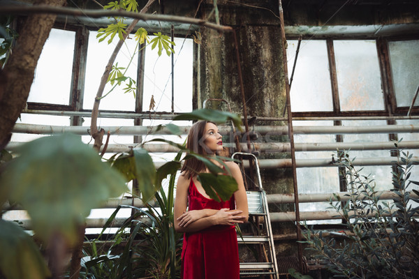 Woman with crossed arms in greenhouse Stock photo © deandrobot
