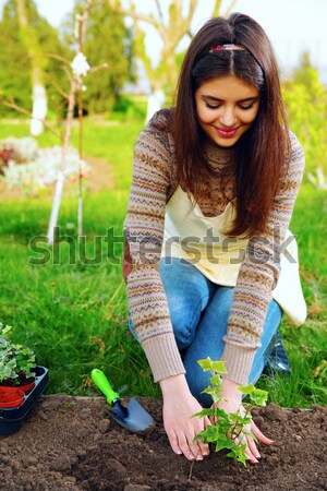 Young attractive woman is watering a garden Stock photo © deandrobot