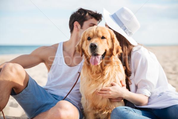 пару сидят сокрытие за собака пляж Сток-фото © deandrobot