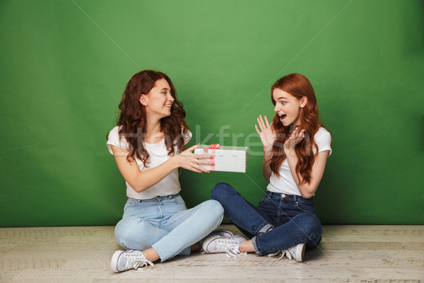 Portrait of two young girls 20s with ginger hair in jeans sittin Stock photo © deandrobot