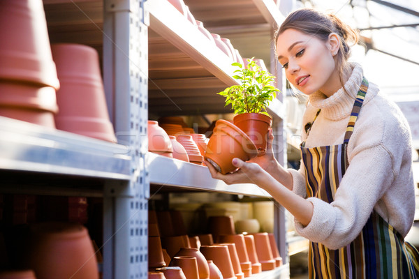Beautiful female gardener looking for new clay pot in store Stock photo © deandrobot