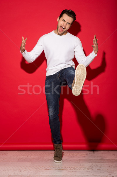 Full length image of screaming man in sweater posing Stock photo © deandrobot