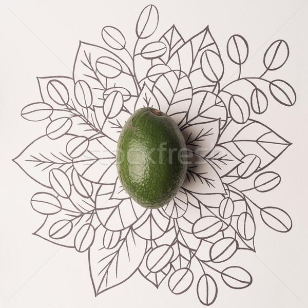 Abacate floral comida natureza Foto stock © deandrobot