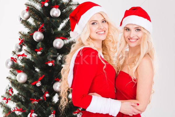 Siostry bliźnięta Święty mikołaj ubrania stwarzające choinka Zdjęcia stock © deandrobot