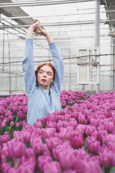 Hideg lány felemelt kezek vörös hajú nő mező tulipánok Stock fotó © deandrobot