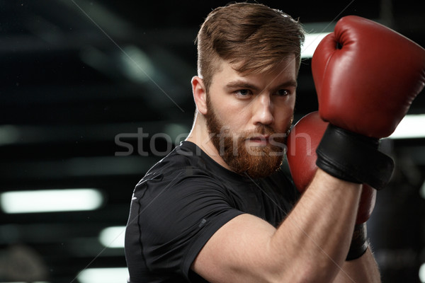 Concentrated handsome young strong sports man Stock photo © deandrobot