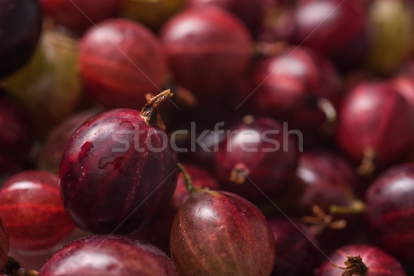 Closeup picture of the gooseberry. Stock photo © deandrobot