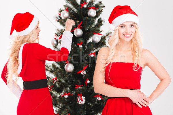 очаровательный содержание близнецы рождественская елка красный Сток-фото © deandrobot