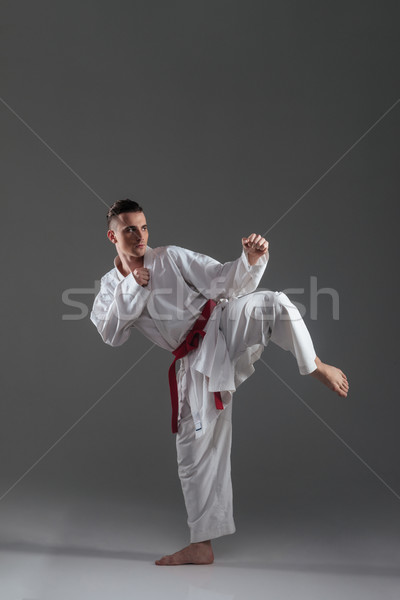 Handsome sportsman wearing kimono practice in karate Stock photo © deandrobot