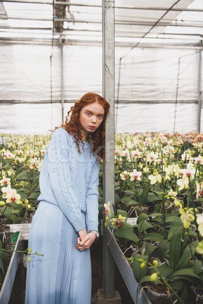 Nő nyaláb virágok lány kötött ruha Stock fotó © deandrobot