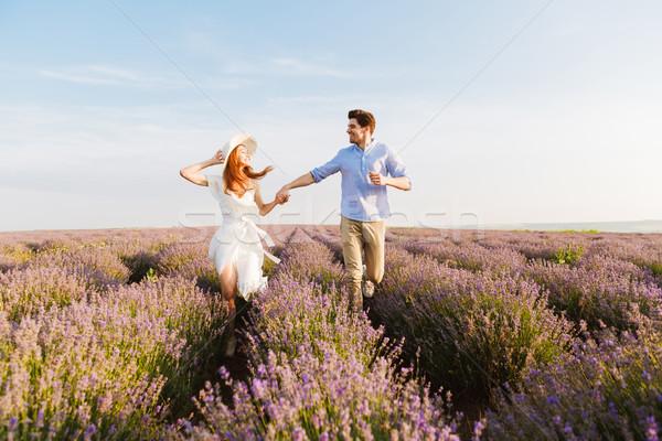 Mooie lavendel veld holding handen lopen Stockfoto © deandrobot
