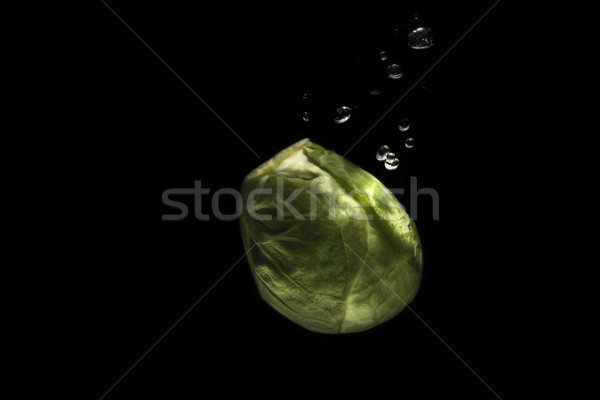 Brussels sprouts dieting food Stock photo © deandrobot