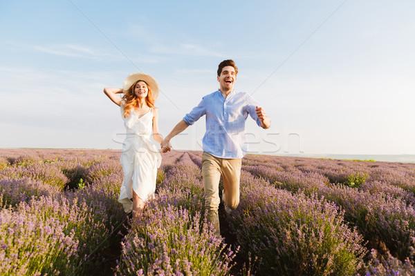 Gelukkig lavendel veld holding handen lopen Stockfoto © deandrobot