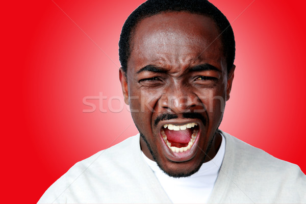 Angry african man screaming on red background Stock photo © deandrobot