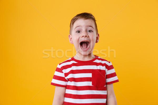 Portrait of a little boy shouting Stock photo © deandrobot