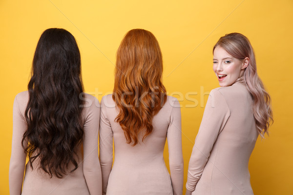 Blonde lady winking to camera near brunette and redhead women. Stock photo © deandrobot