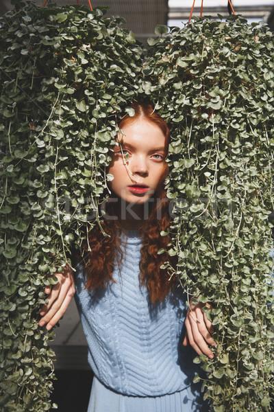 Portrait of girl hiding in plants Stock photo © deandrobot