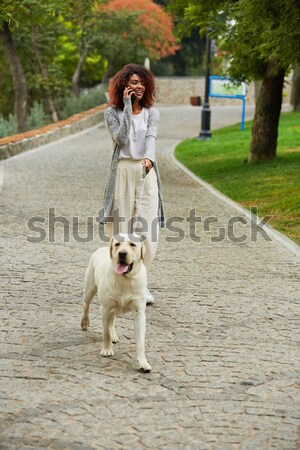 Full-length shot of pretty healthy young lady walking in the morning in park with dog Stock photo © deandrobot