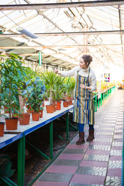 Concentrated woman gardener working with flowers in garden center Stock photo © deandrobot