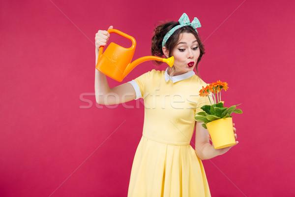 Boldog játékos fiatal nő locsol virágok edény Stock fotó © deandrobot