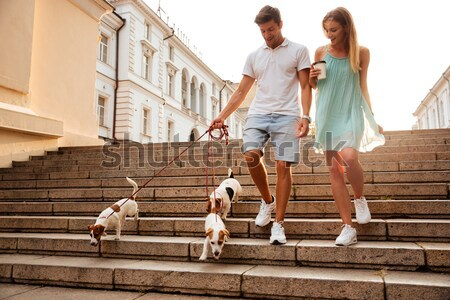 Couple marche vers le bas escaliers chiens rue Photo stock © deandrobot