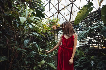 Beauty woman in greenhouse Stock photo © deandrobot