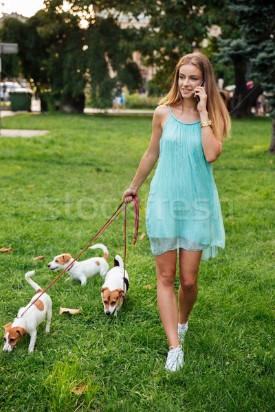 Woman talking on phone while walking her dogs in park Stock photo © deandrobot